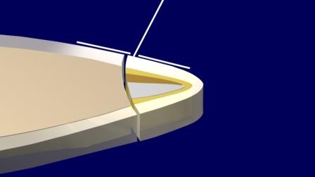 Figura 27: El esmalte difusor guia haces de luz hacia el esmalte adyacente.